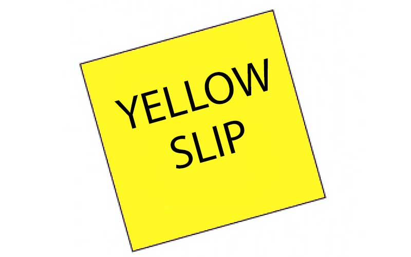 YELLOW SLIPS